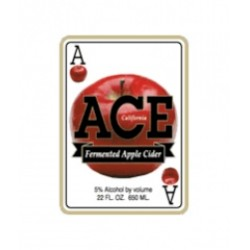 Ace Apple Cider 1/6bbl Keg