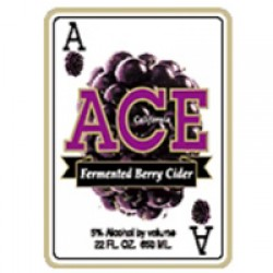 Ace Berry Cider 1/6bbl Keg